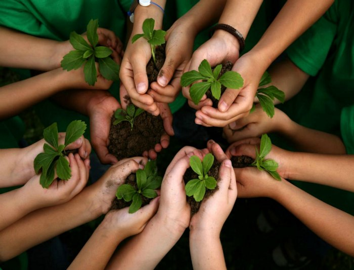 Autoestima: la semilla que necesita tierra fértil #sersiendo