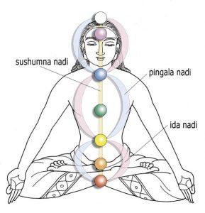 Nadis en Yoga