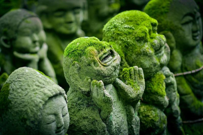 Budismo: por qué debería interesarte #sersiendo
